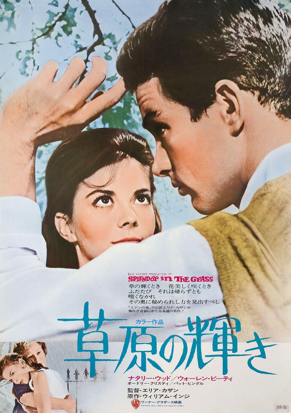 Splendor in the Grass R1972 Japanese B2 Poster