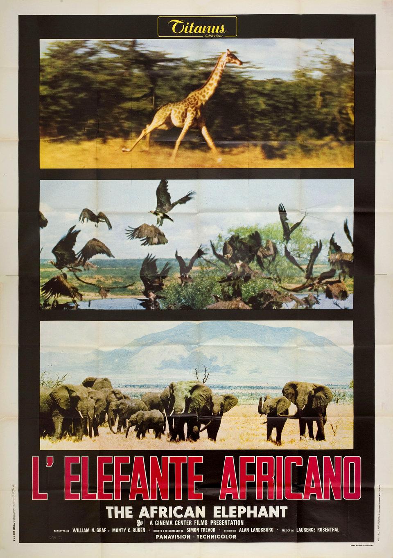 The African Elephant 1972 Italian Quattro Fogli Poster